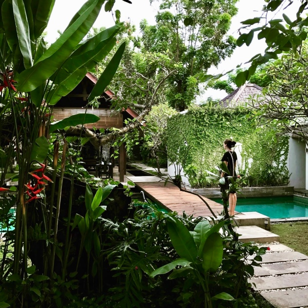 Gardens, privacy; a haven of peace and tranquillity in the middle of the busy Seminyak!