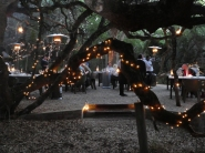 If you are lucky, you'll experience a 'boma dinner' at Grootbos.